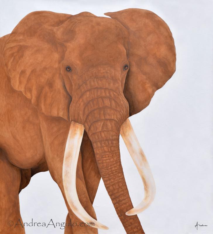 Satao - African Elephant #2