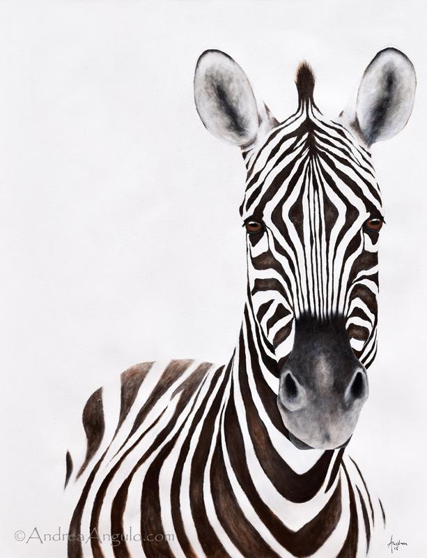 Plains Zebra #1
